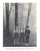 Härliga Trion